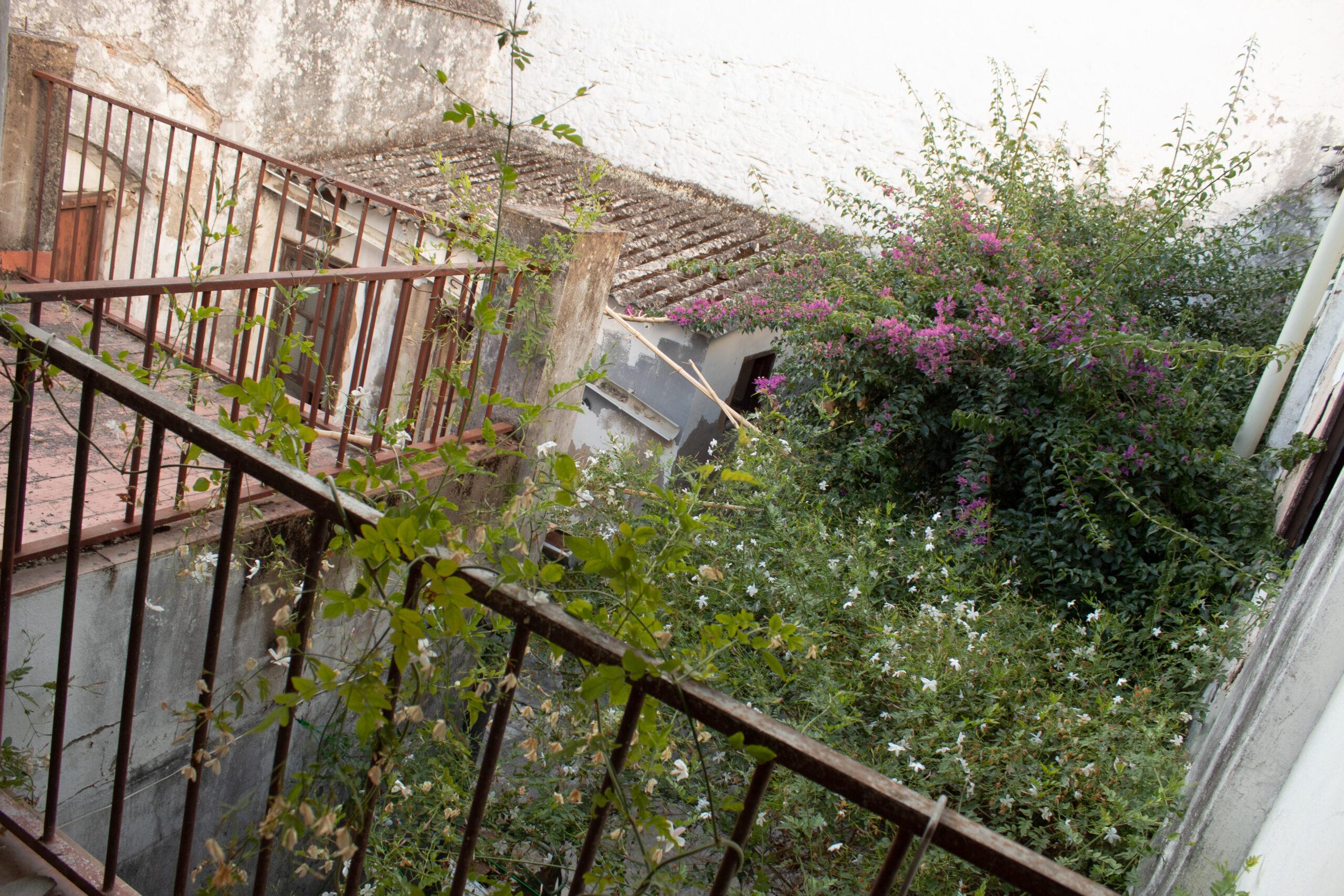 Terraza con vistas al patio